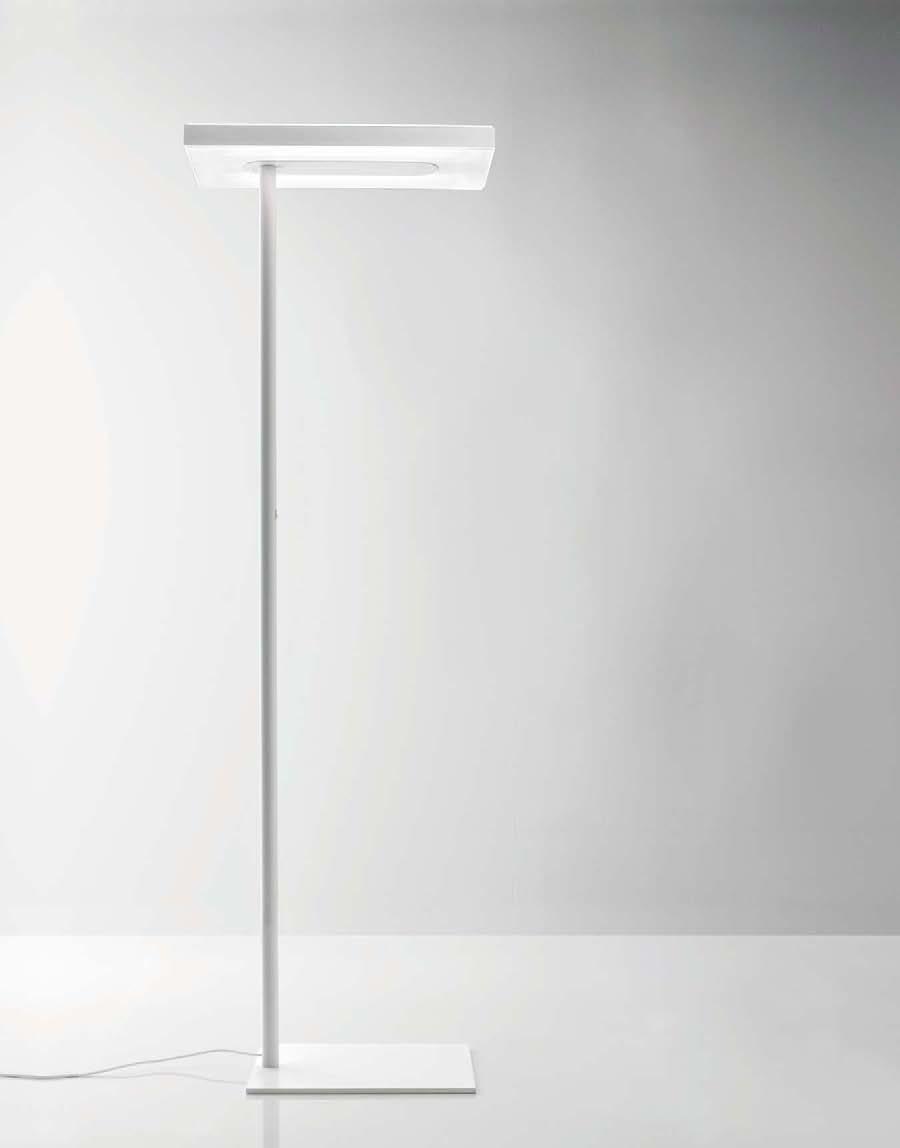 luz linea-2